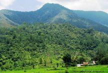 Kampung Opung / Tempat ternyaman sejauh ini ditinjau dari segi cuaca, pemandangan, kepadatan bangunan, dan kebiasaan/adat.