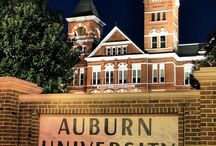 School: Auburn University - War Eagle!!!