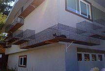 Gatos - Ambientes Externos