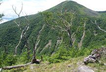 編笠山(八ヶ岳)登山 / 編笠山の絶景ポイント 八ヶ岳登山ルートガイド。Japan Alps mountain climbing route guide