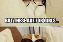 Animals Make Me Laugh