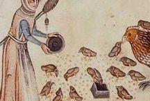 iluminace středověk