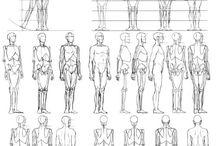 Anatomie / Mensen