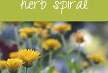 DIY Herb Garden / DIY Herb Garden: ALL THINGS HERBAL! How to plant, grow, maintain, dry, store and use fresh herbs. The healthy benefits of cooking with, and eating garden fresh herbs. Various herbal home remedies and the MANY medicinal benefits of using different herbs! Contributors: Welcome, and Thank You For Joining! BEST of Luck on Your Pins! ~ Christine