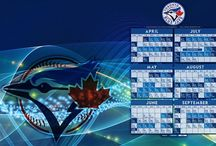 Toronto Blue Jays Game Limo Transfer Service 1 416 845 5005 / Toronto Exclusive Limo offers affordable Sports Event Limo Transportation Service for all Toronto Blue Jays Gaming Events at Toronto Rogers Centre.