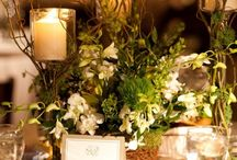Wedding Decoration/Setting / by Samantha Wright
