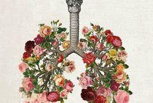 Medicine is Art