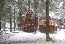 Oregon Vacations / by Stephanie Watson