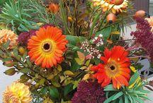 In my Garden - Fall / by Lisa Sanner