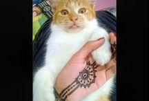 Henna / My henna
