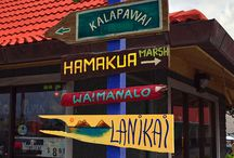 HAWAII SHOP