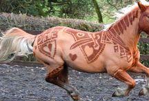 Horses for Lara
