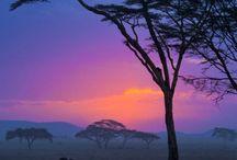 Luoghi / I posti più belli, i viaggi da fare, gli scorci più appassionanti!