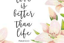 citace z bible
