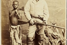 Safari History