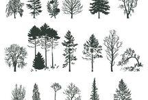 Татуировки С Деревьями