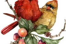 cardinals and other birds