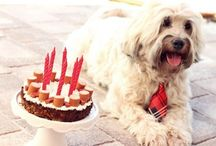 Benny Geburtstag