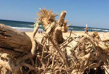On the beach / Toutes les plages du monde