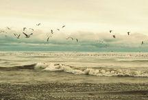 { deep ocean, vast sea }
