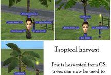 TS2 CC - Tropical Stuff