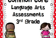 Common Core Standards / Educational standards describe what students should know and be able to do in each subject in each grade.