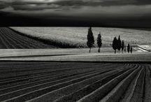 Fotografie In Bianco E Nero