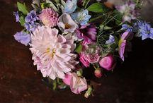 Work by The Informal Florist / The Informal Florist