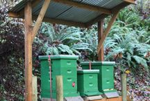 Animals - Keeping Bees