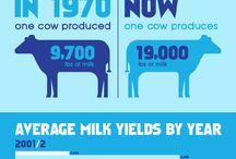 No milk diet