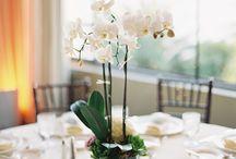svadba stol