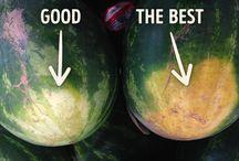 choosing watermelon