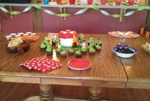 Sam's Gnome Party / June 2013, Super Sam's gnome themed birthday
