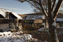 Winter in Willingen / Bezaubernde Einblicke in das winterliche Willingen und unser H+ Hotel Willingen. Lasst Euch inspirieren wie man die kalte Jahreszeit mit Entspannung aber auch aktiv verleben kann.