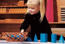 Montessori sensorial
