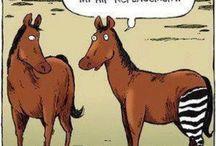 Animal humor / Animal humor... Hahaha