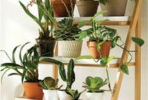 Natural Living / Natuurlijk Wonen bij Interieur Paauwe Zonnemaire
