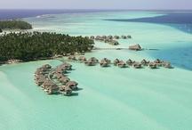 Tahaa Resorts / True Tahiti Vacation's Pinterest guide to the best resorts of Tahaa!