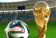 Die WM 2014 /  Bilder und Infos zur WM 2014.