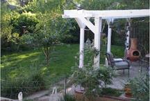 In the Garden / Gardening, vegetable, flower, landscaping, kitchen garden