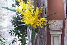 Fantastic Flowers by Mora Taara