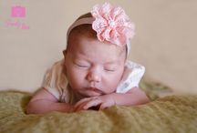 Newborn Photography by Family Tree