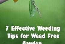 DIY Garden Fix