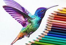 Värikynät