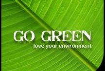 Environment Day / World Environment Day 2013 / by Zen Bedrooms