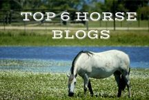 Horse Blogs / Our Favorite Horse Blogs / by Horseclicks