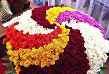 500 Mix Color Roses bunch / Brand: 500 Mix Color Roses bunch Product Code: 919 Reward Points: 831 Availability: In Stock