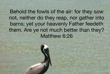 Bible verses / Religious