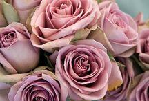 Flowers pink dust