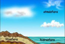 infografia biósfera / infografia de la biósfera, Bioma y ecosistema